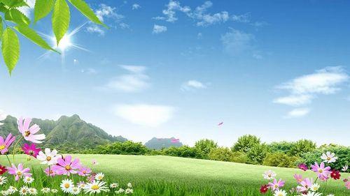 nature-1607153_960_720.jpg