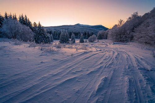 winter-4963715_960_720.jpg