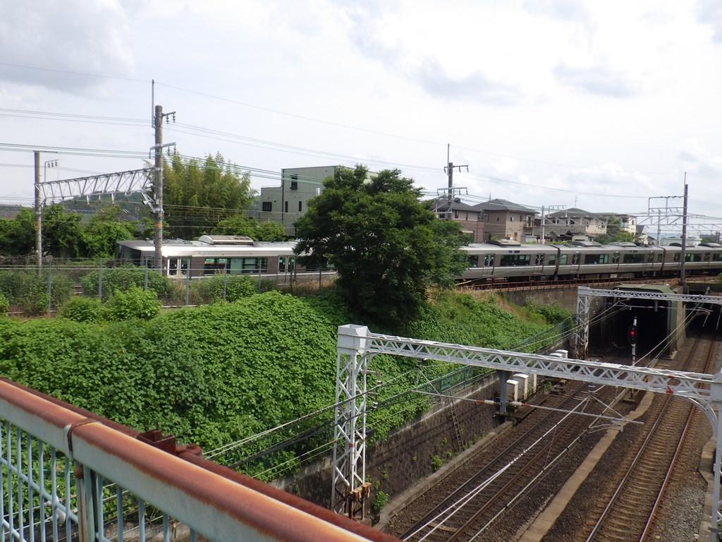 s-RIMG6921.jpg