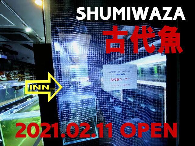 SHUMIWAZA2.jpg