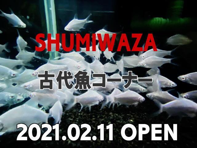SHUMIWAZA_20210123165039114.jpg