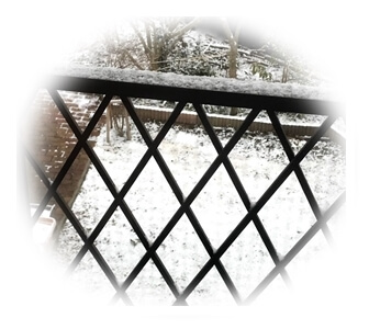 雪が積もってる02181