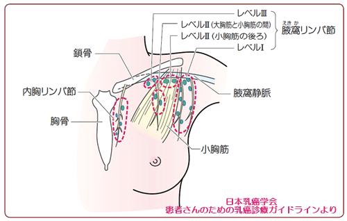 p97_Q24_図1
