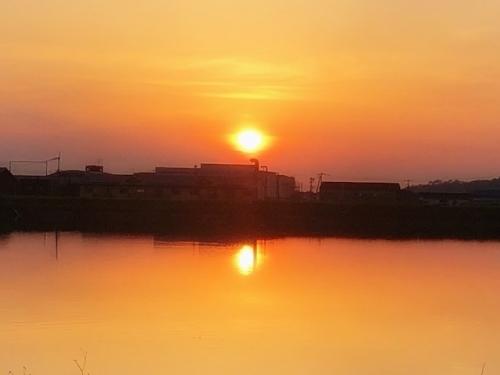 溜池に移る夕日