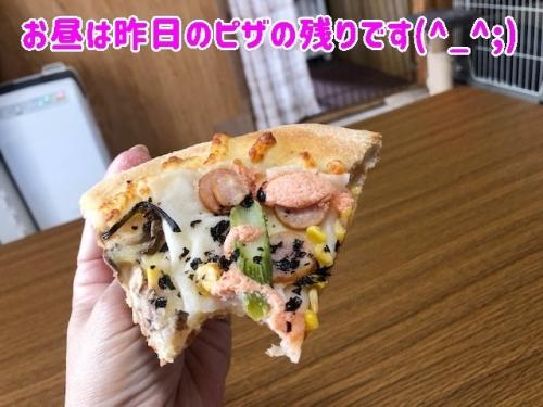 お昼はピザの残り