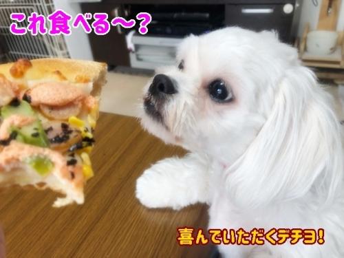 これ食べる?