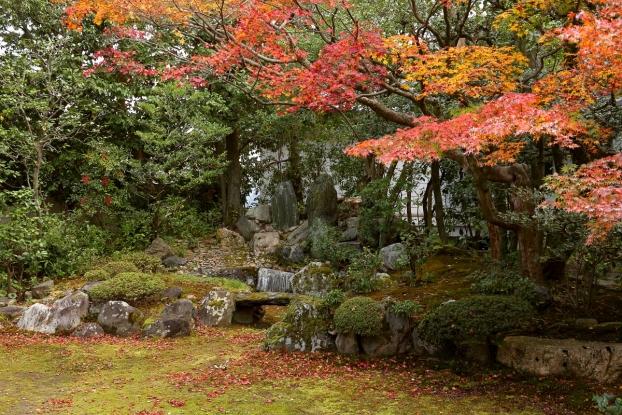 本法寺庭園・枯滝と紅葉