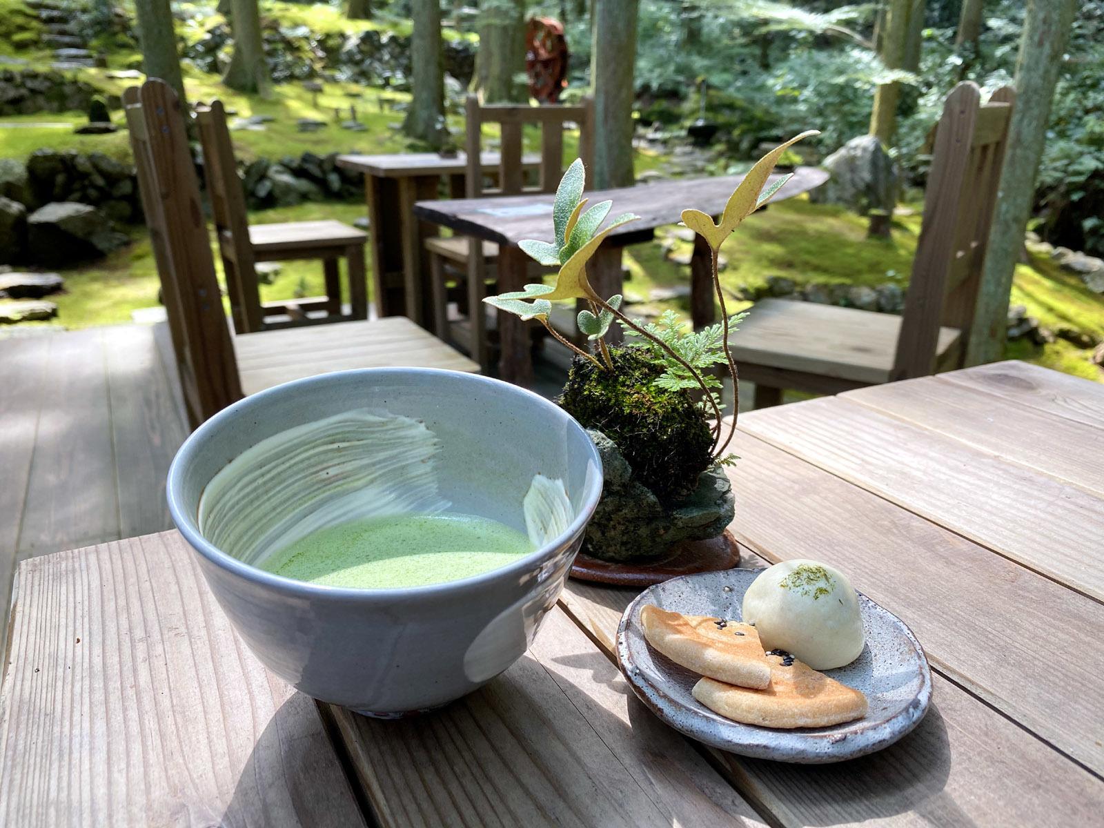 抹茶 400円&苔まんじゅう +100円と景色
