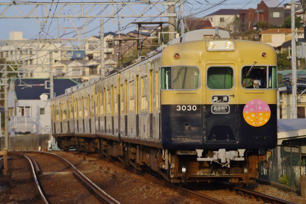 210331sanyoshioya-sumaurakoen.jpg