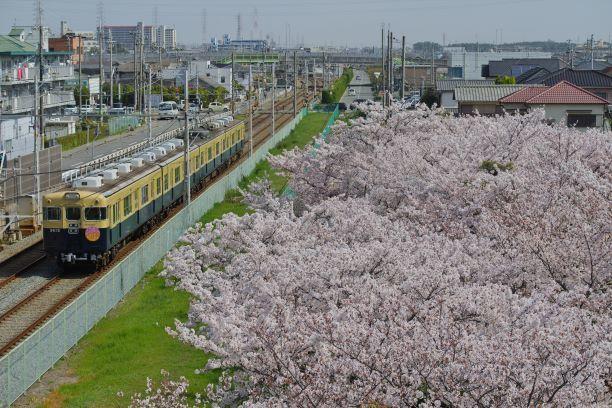 210402onoenomatsu-takasago2.jpg