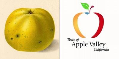 20210527-10-apple-2.jpg