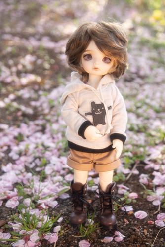 BJD CROBI-DOLL, E Line, Toriのロビン。桜の散った後の野原で、桜を堪能。