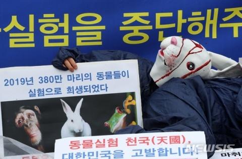 動物虐待を行うバ韓国塵ども