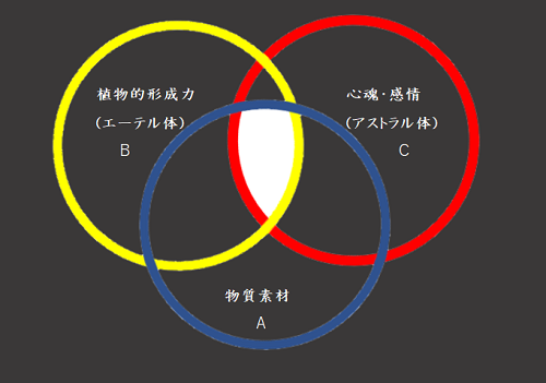 20201124SS00001.png