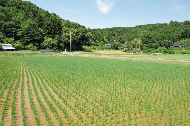 20210219 農村風景.jpg