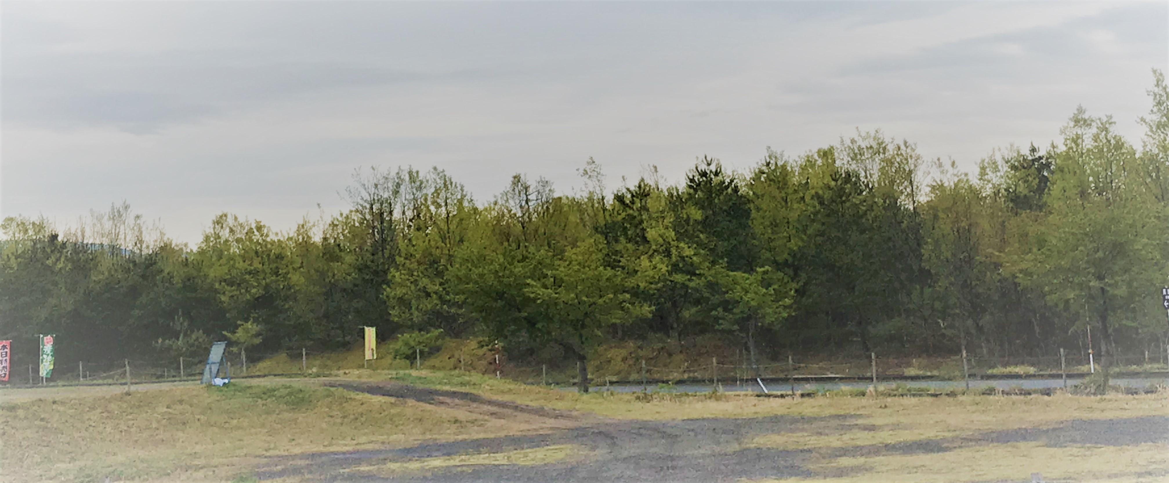 胎内市長池憩いの森公園