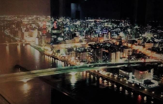 柳都大橋・夜景5