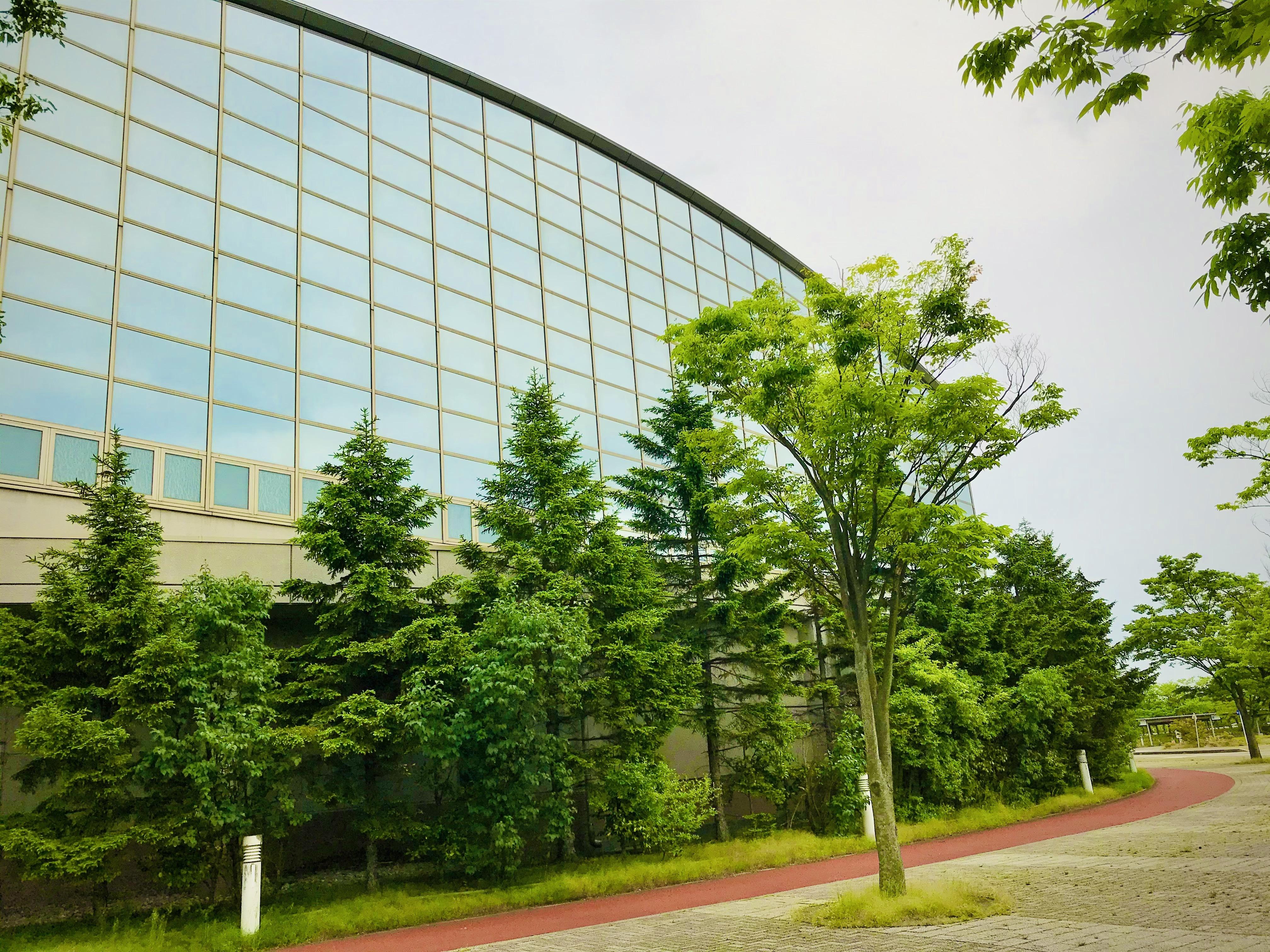東総合スポーツセンターとウォーキングコース