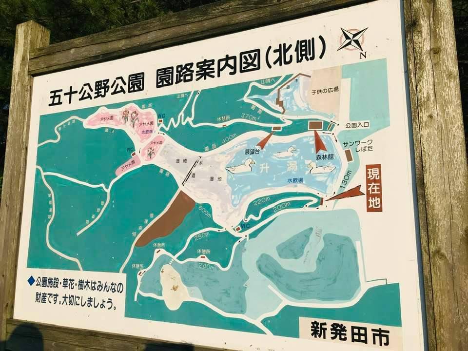 新発田市五十公野公園案内図