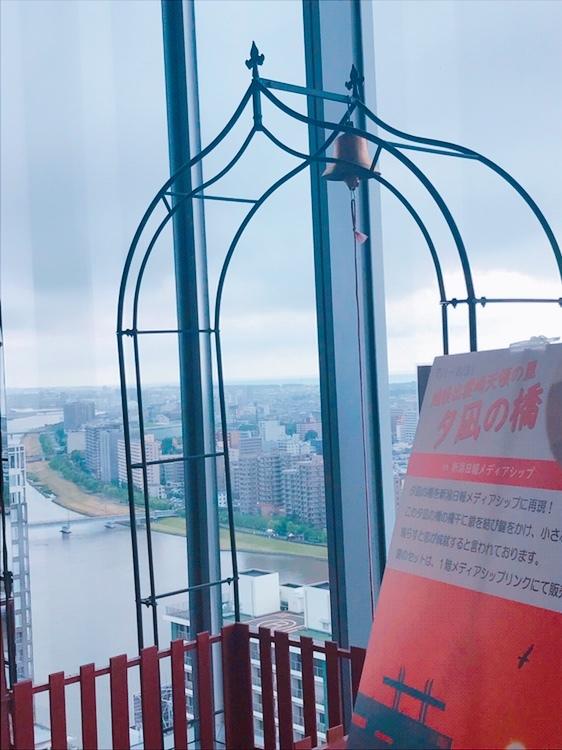 メディアシップ夕凪の橋 (1)