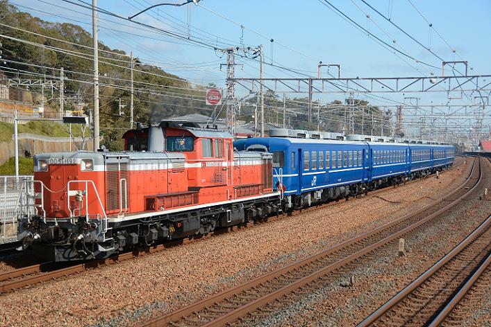 DSC_5825-2-1 (2)