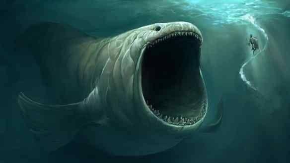 ザトウクジラ クジラ ダイバー 丸呑み