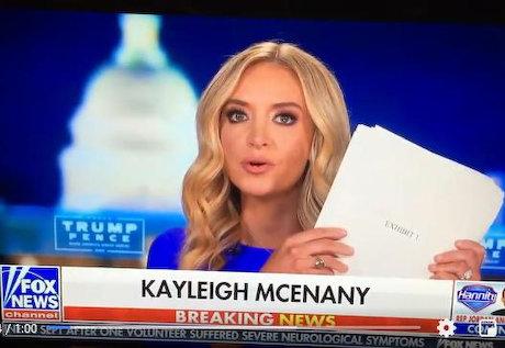 米大統領選 ケイリー・マクナニィー 不正投票