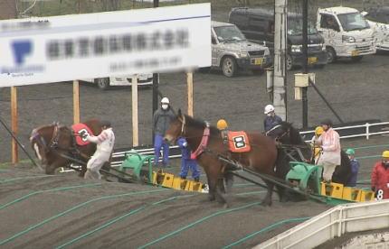 ばんえい競馬 馬 虐待 北海道