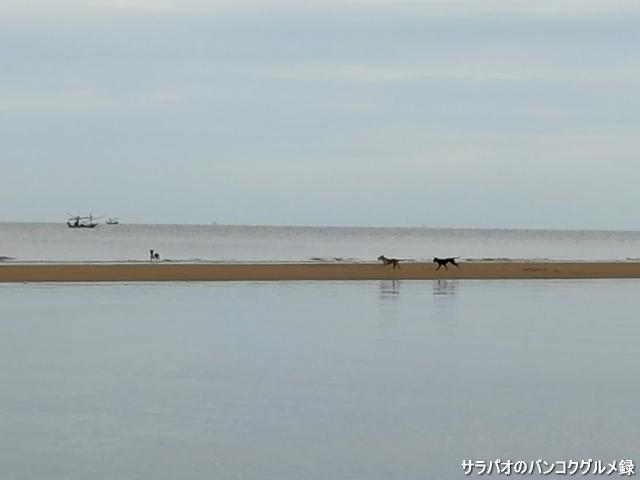 Pranburi Beach หาดปราณบุรี