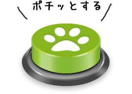 btn_green_default.jpg