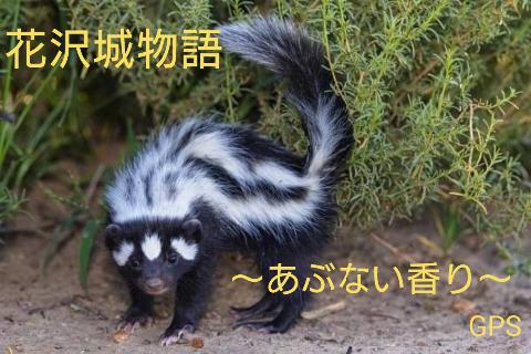 『花沢城物語~あぶない香り~』 byGPS