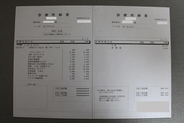 2020.03.16 抜歯+スケーリング-11