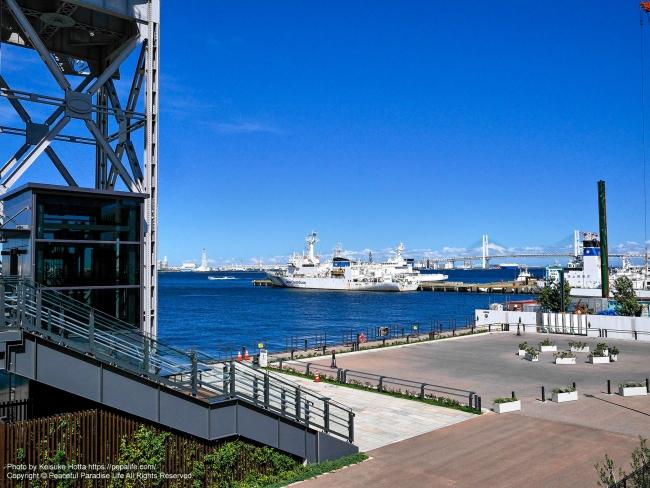 横浜ハンマーヘッドの裏から横浜ベイブリッジを望む