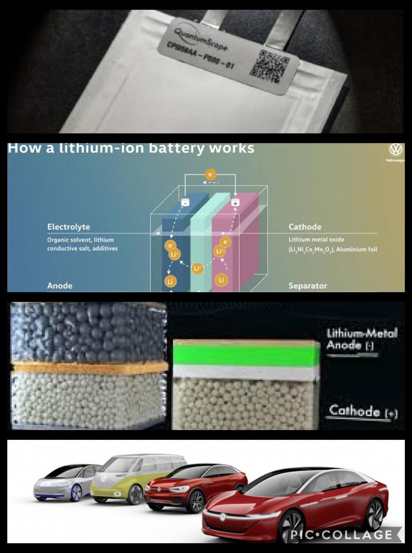 全個体電池 VW
