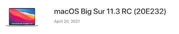 bigsur113RCバナー