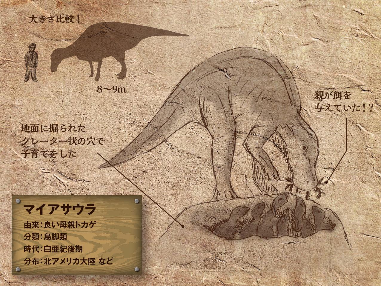 Maiasaura_.jpg