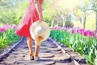 陽の下を散歩しよう