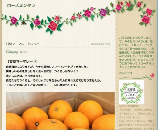 s-20210316-1甘夏マーマレードレシピ