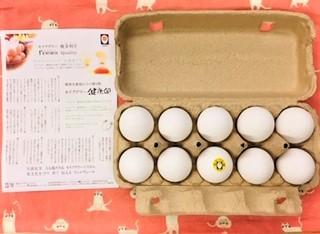 20210624卵