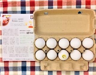 20210822セイアグリー健康卵
