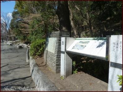20200316 江戸川橋公園 6  神田川~目白台