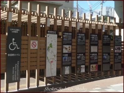 20200316 江戸川橋公園 11 神田川~目白台
