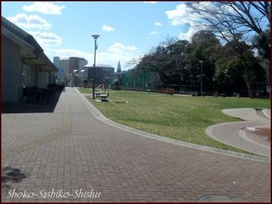 20200316 目白通り 5  神田川~目白台