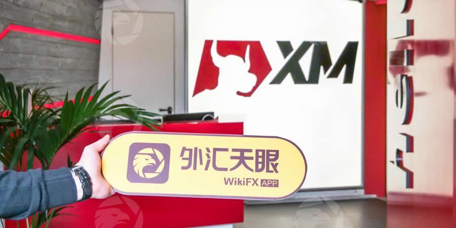 XM現地調査