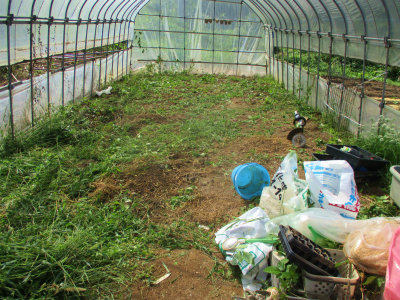 200928草を刈ったハウス
