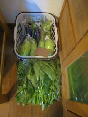 200928出荷野菜