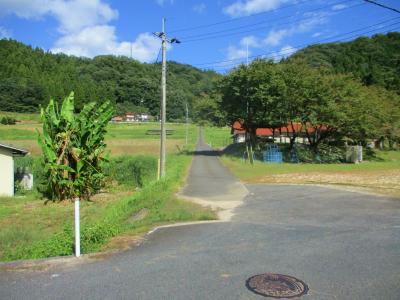 201007湯村4