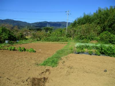201018そらの畑