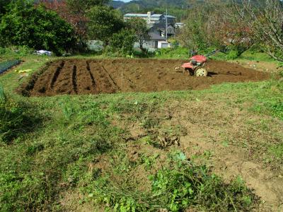 201031緑なす・オクラ撤収後の耕耘2