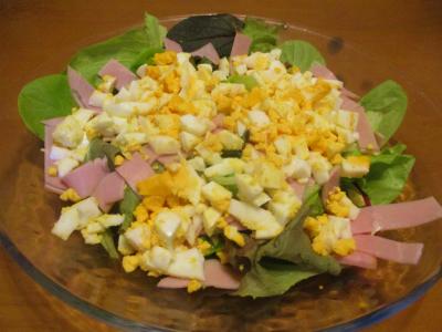201103サラダ菜で簡単サラダ